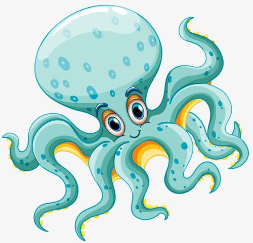 章鱼搜索app