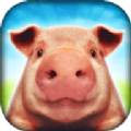 小猪猪模拟器v1.0